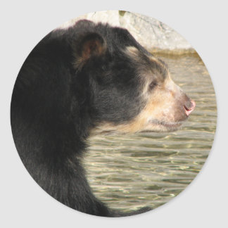 Spectacled Bear Classic Round Sticker