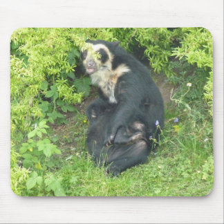 Spectacled Bear Mousemat, Animals Collection Mouse Pad