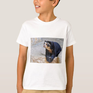 Spectacled bear on rocks T-Shirt