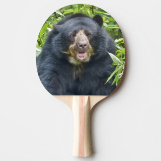 Spectacled Bear - Ping Pong Paddle