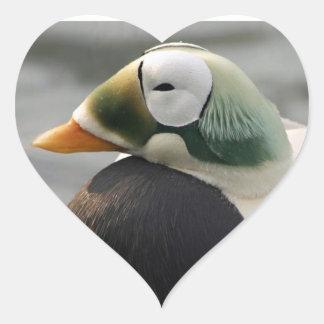 Spectacled Eider Heart Sticker