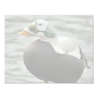 Spectacled Eider Male and Female Personalized Invite