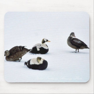 Spectacled Eiders Mouse Pad