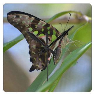 Spectacular Butterfly Wallclocks