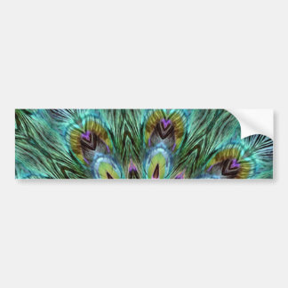 Spectacular Color Peacock Feather Kaleidoscope Bumper Sticker