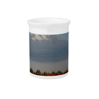 SPECTACULAR FALL COLOR SCENICS DRINK PITCHERS