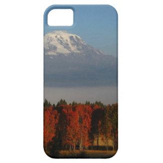 SPECTACULAR FALL COLOR SCENICS iPhone SE/5/5s CASE