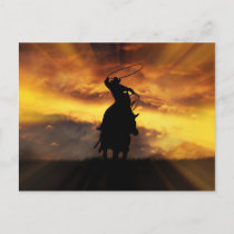 Spectacular Roping Cowboy Horse Steer and Sunset Postcard