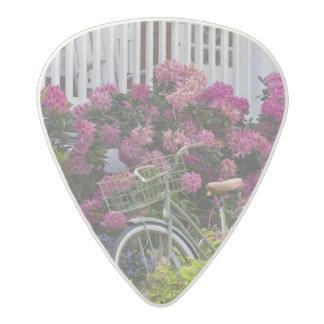 Spectacular spring bloom, whimsical antique acetal guitar pick