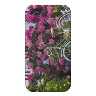 Spectacular spring bloom, whimsical antique iPhone 4/4S cover