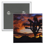 Spectacular Sunrise at Joshua Tree National 2 Inch Square Button