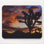 Spectacular Sunrise at Joshua Tree National Mouse Pad