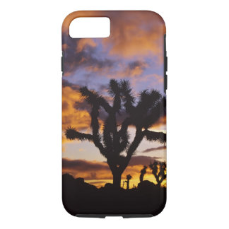 Spectacular Sunrise at Joshua Tree National Park iPhone 7 Case