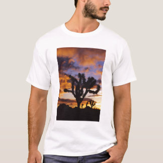Spectacular Sunrise at Joshua Tree National Park T-Shirt