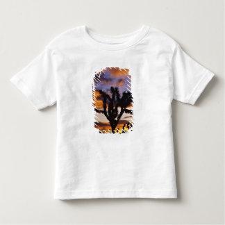 Spectacular Sunrise at Joshua Tree National Park Toddler T-shirt