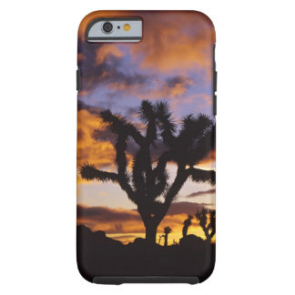 Spectacular Sunrise at Joshua Tree National Park Tough iPhone 6 Case