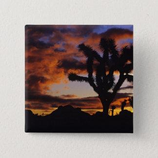 Spectacular Sunrise at Joshua Tree National Pinback Button