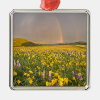 Spectacular wildflower meadow at sunrise in 2 metal ornament