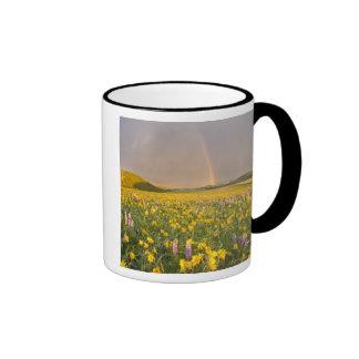 Spectacular wildflower meadow at sunrise in 2 coffee mug