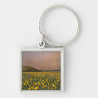 Spectacular wildflower meadow at sunrise in key chain