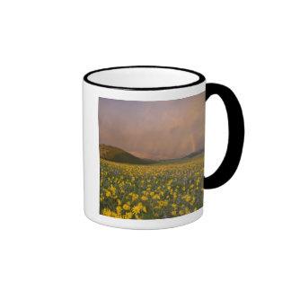 Spectacular wildflower meadow at sunrise in coffee mug