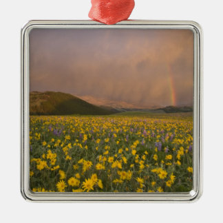 Spectacular wildflower meadow at sunrise in christmas ornaments