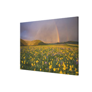 Spectacular wildflower meadow at sunrise in the 2 canvas print