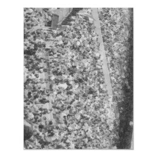 Spectators in a stand 4.25x5.5 paper invitation card