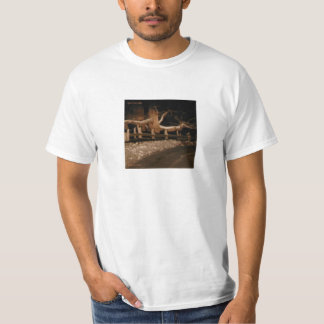spectral arts-Homeward 2012 T-Shirt