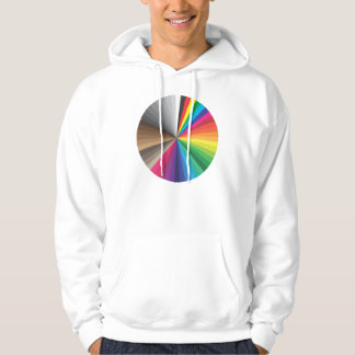 spectral frame and color swatches hoodie