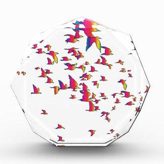 Spectrum Birds Award