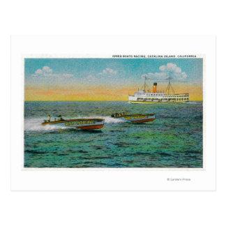 Speed Boating in Catalina Island, California Postcard