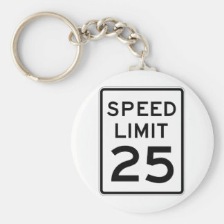 Speed Limit 25 Street Sign Keychain