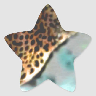 Speeding Spots Star Sticker