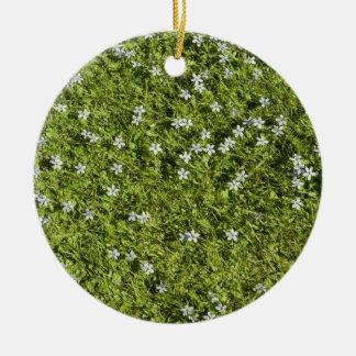 Speedwell Ornament
