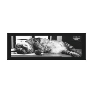 "Spencer Cat 36"" x 12"" Canvas Print"