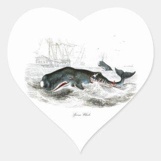 Sperm Whale #9 Gift for him Heart Sticker
