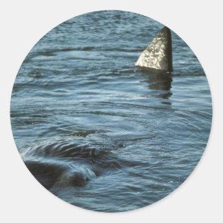 Sperm Whale Classic Round Sticker