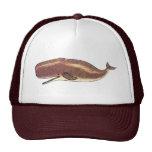 Sperm Whale Mesh Hats