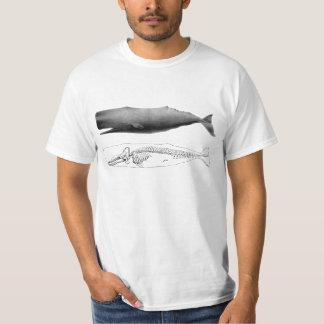 sperm whale t shirt