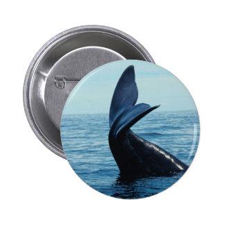 Sperm Whale Tail 2 Inch Round Button