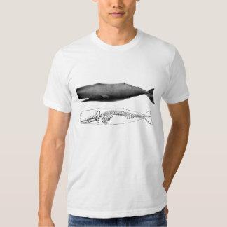Sperm whale tee shirt