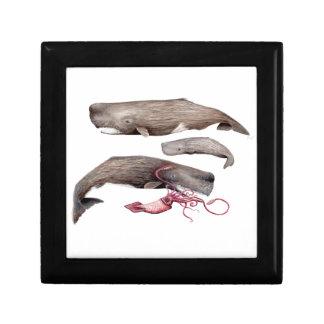 Sperm whales trio keepsake box