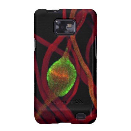 Spermatid Galaxy S2 Carcasa