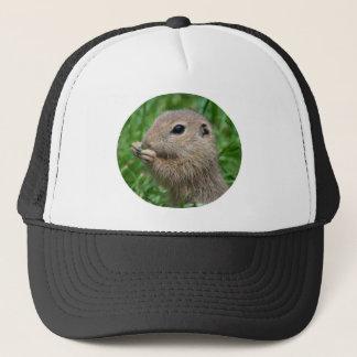 Spermophilus citellus trucker hat