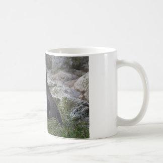 Spheniscus humboldti coffee mug