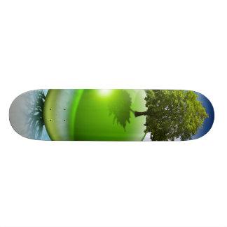 Sphere tree -  ecology concept skateboard