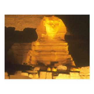 Sphinx at Night Postcard