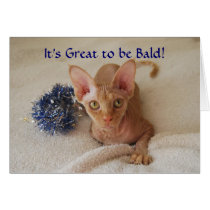 Sphinx Cat Hairless Chemotherapy Humor Card
