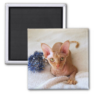Sphinx Cat With Blue Tinsel Magnet